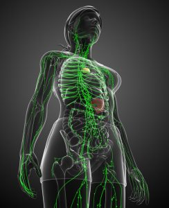 Lymphatic Drainage | Pain to Performance Solutions